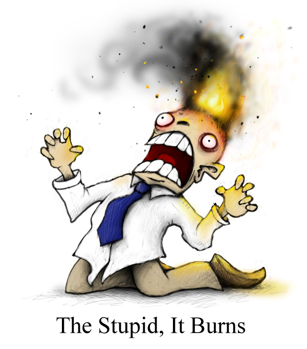 stupid_it_burns